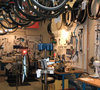 Bike Shops & Guiding